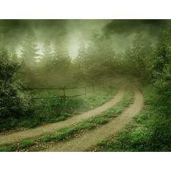 پوستردیواری طرح جاده مه آلود کد NT.015
