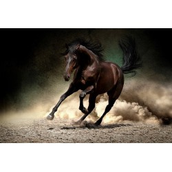 پوستردیواری سه بعدی طرح اسب قهوه ای مشکی کد Nm.021
