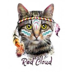 پوستر دیواری طرح گربه سرخ پوست کد P022