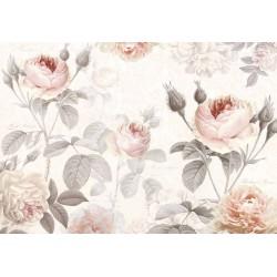 پوستر دیواری طرح گل رز گلبهی