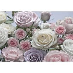 پوستر دیواری طرح گل های رز رنگی