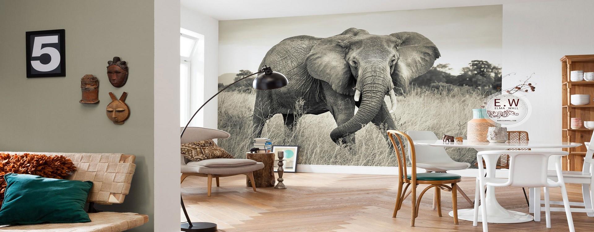 پوستر دیواری طرح حیوانات و انواع مختلف آن در مجله دکوراسیون خونه شو